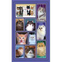 Наклейка кошки 187-20