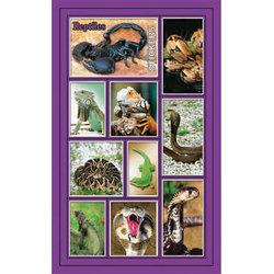 Наклейки рептилии 186-02